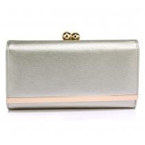 Dámská stříbrná peněženka Libby 1050a